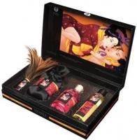 Эротический набор Tenderness & Passion Kit купить